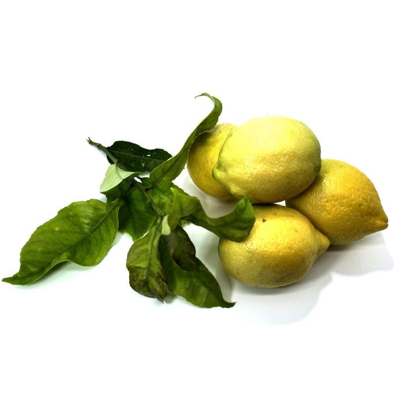 ORGANIC Sicilian lemons - 5 kg pack
