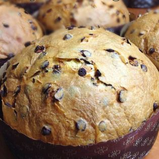 Panettone with chocolate drops Giulio